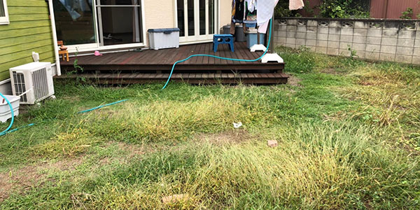 庭の雑草をスタンプコンクリートで対策