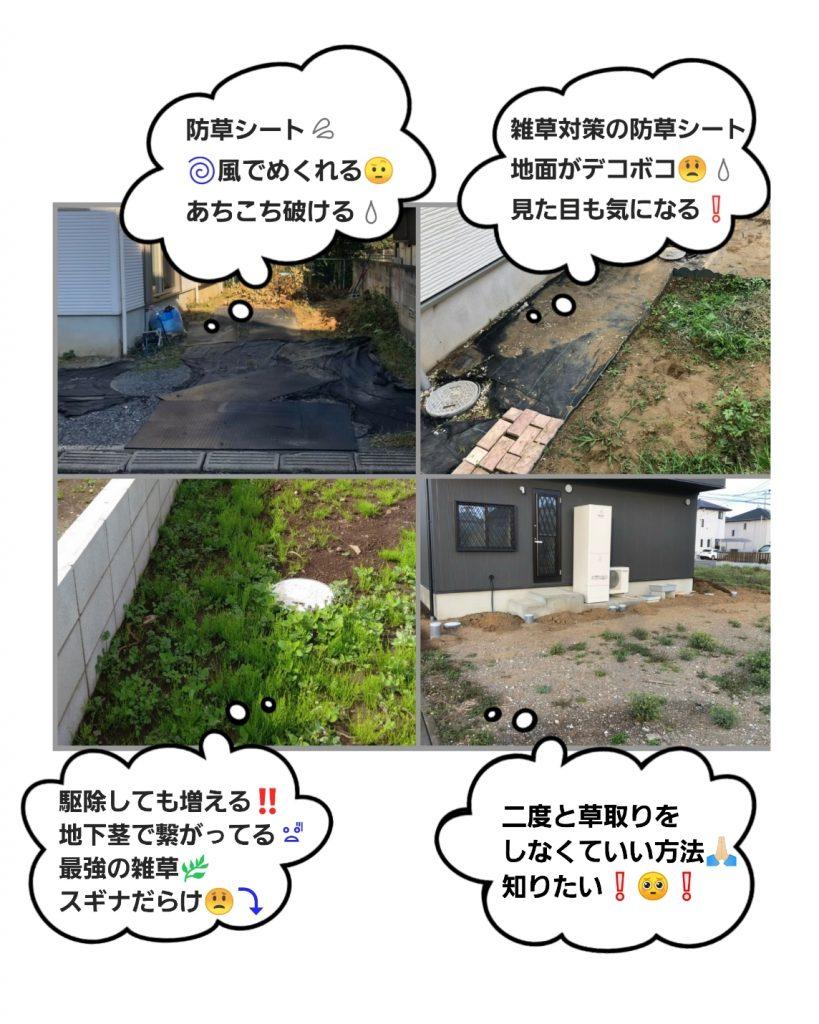 雑草対策について